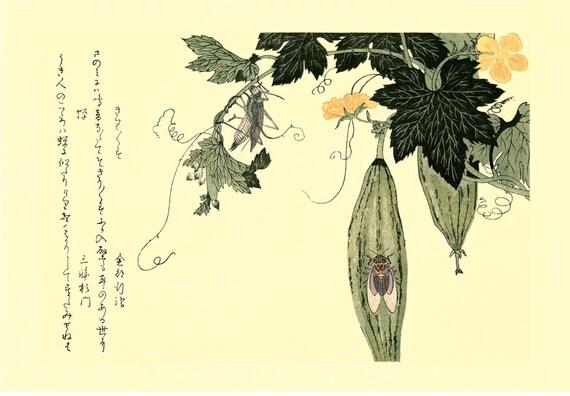 """Japanese Ukiyo-e Woodblock print, Utamaro, """"Cicada (Semi) and Grasshopper (Kirigirisu)"""""""