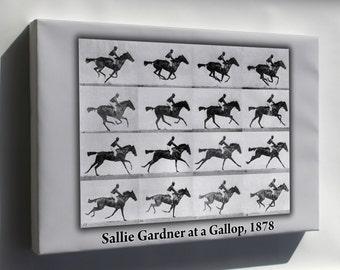 Canvas 16x24; Sallie Gardner At A Gallop Eadweard Muybridge 1878