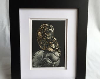 Original Owl Scratchboard Art 5x7