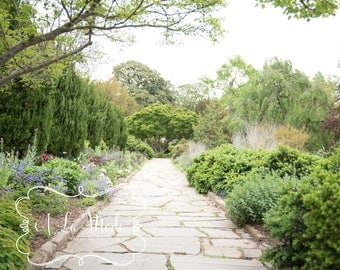 Stone Path Flower Garden Spring Digital Photography Background Collection Flowers