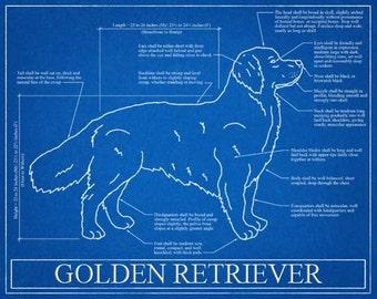Golden Retriever Blueprint Elevation / Golden Retriever Art / Golden Retriever Wall Art / Golden Retriever Gift / Golden Retriever Print