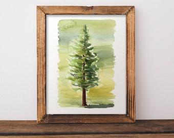 Ponderous Pine / watercolored pine treen painting