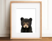 Bear print, Nursery art, Woodland animals, PRINTABLE art, Baby bear cub, Nursery decor, Animal art, Baby animals, Nursery wall art, Kids art