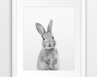 Rabbit Print, Nursery Animal Wall Art, Cute Baby Animal, Bunny Print, Black & White Animal Print, Woodland Animal, Printable Nursery Decor