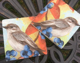 Set of 2 Marble Coasters~Berries and Bird/Blue/Orange/Berries/Foilage/Autumnal