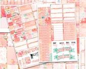 Just Peachy Planner Sticker Set