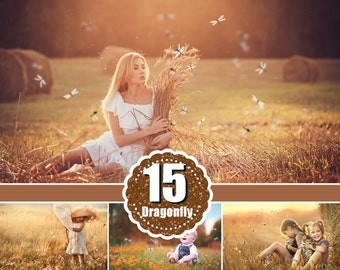 15 Dragonfly butterfly photo photography Overlays, Photoshop overlay, photo effects, magic overlays, summer spring overlays, png file