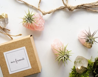 You Rock Rose Quartz Air Plant, Gift For Coworker, Appreciation Gift, Valentines Day Gift For Her,Thank You,Birthday Gift Crystal Air Plant