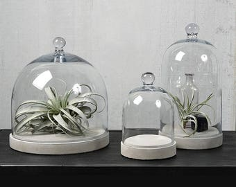 Glass Dome Glass Cloche Sweet Holder Cheese Plate Home Decor Glass Dome