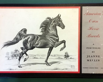 AMERICA'S Own HORSE BREEDS -  Jeanne Mellin - 12 B&W Sketch Prints 1962 Complete Portfolio