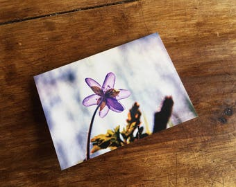 Greeting card / / spring / / A6