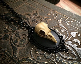 Bird skull necklace / resin bird skull necklace / taxidermy necklace / gothic necklace / bone jewelry /skull replica