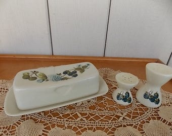 Vintage Iroquois Blue Floral and Berry Informal True China by Ben Seibel Butter Dish and Salt and Pepper Shaker Mid Century