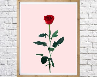 Red Rose poster, typography print, digital print, instant download, minimal art, printable art, wall decor,