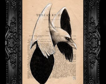 Crow. Nº 9. Pencil and ink drawing on page of French publication of the 1930 illustration. The measurement of the leaf is 28 x 19 cm.