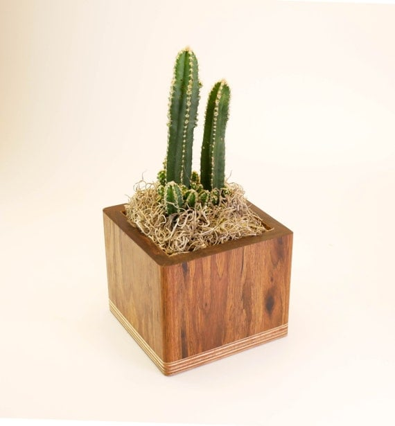 Unique Square Planter Decorative Plant Pot Indoor Plant