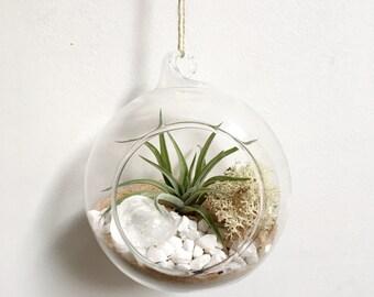 Aries April Diamond Quartz Air Plant Garden Kit • terrarium tillandsia birthstone crystal birthday personalize gift diy present airplant