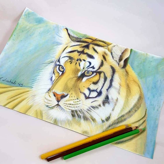 Drawing, tiger portrait, colored pencils, gift idea for First Communion, boys bedroom office decoration, wild animal lovers, african style.