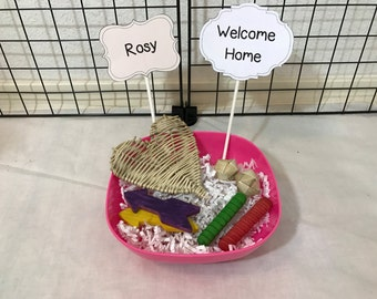 Custom Rabbit / Chinchilla / Guinea Pig Toy Gift Basket. Personalized Message! Includes 7 Wood Chews. Makes a great gift!