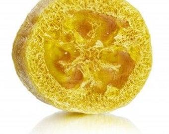 Bergamot Grapefruit Loofah Soap