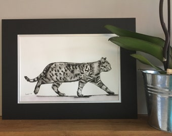 The Original Painting for Sale.   A Charming  Pen and Ink Watercolour illustration of  the walking Black and White Tabby Cat.