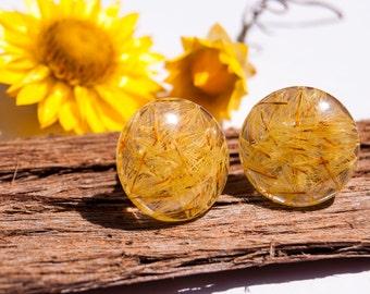 Daisy Seed Earrings, Real Daisy Earrings, Real Flower Earrings, Real  Flower Jewelry, Gift from Australia, Eco Resin Earrings, Stud Earrings