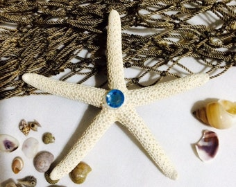 Little Mermaid starfish  hair clip