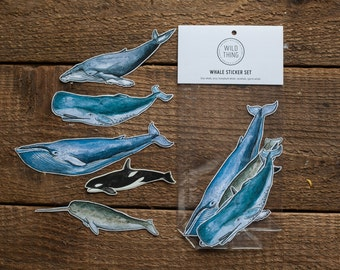 Whale Sticker Set
