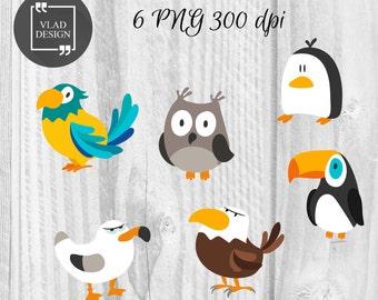 6 Cartoon funny birds Birds Clipart Digital Birds Elements Cute kids graphics Cartoon clipart Bird Parrot Penguin Owl Cormorant