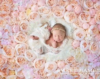 Newborn Digital Backdrop - Peach and Pink Peony Flower Wall