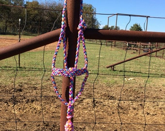Muletape halter with 4 colors