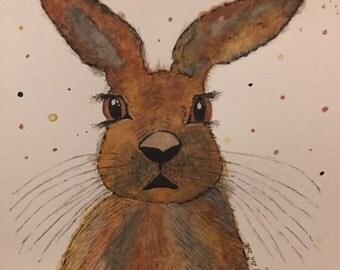 Jack Rabbit Original Watercolour Painting