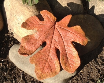 Handmade concrete fig leaf casting