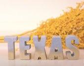 Concrete TEXAS Letters wi...