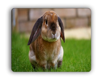Lop Ear Rabbit Computer Mouse Pad Nature Wildlife