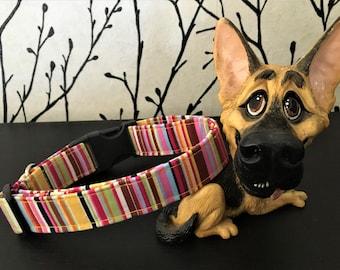 Bright Stripes Dog Collar