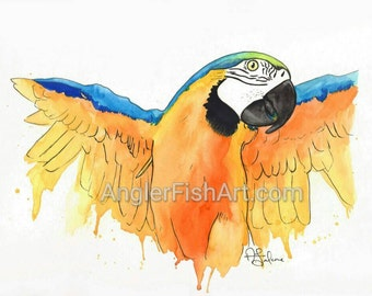 """Rio the blue and gold macaw 8x10"""" Giclée Print"""