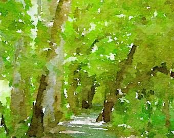 Tree Watercolor • North Carolina Art • Mountain Artwork • Cabin Wall Art • Tree Wall Hanging • Tree Artwork • Tree Print • Tree of Life