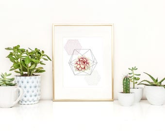 Print of an illustration of geometrical shapes and succulent plant / botanical / print art / wall art / abstract / minimalist