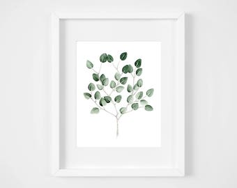 Poster of a branches of eucalyptus illustration / watercolor and pencil in 5 x 7 or 8 x 10 format / minimalist