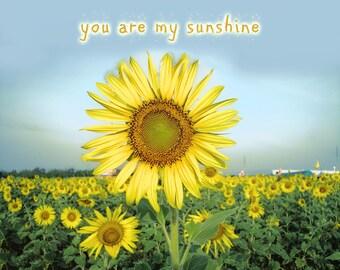 "Sunflower Wall Decor - nursery wall quotes you are my sunshine 8x10 prints inspirational wall art 5x7 yellow baby wall 11x14  ""My Sunshine"""