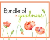 Bundle of Goodness [All 5 Energy Alchemy Elixirs + the Clearing & Blessing Spray]