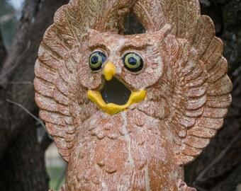 Whoooo Needs a Birdhouse?