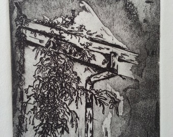 Ivy Through Wood