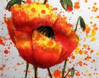 Small poppy watercolor