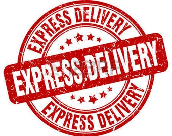 EXPRESS DELIVERY, shipping to worlwide
