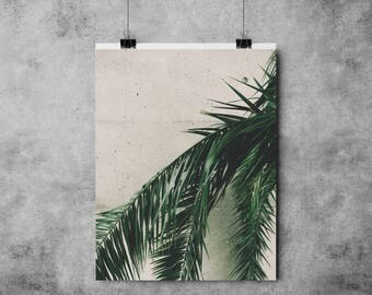 Botanical Hanging Leaves - Palm Tree  - Green - (A4/A3) Plant / Tropical / Jungle /Botany / Succulent / Leaf / Print / Poster