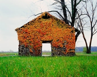 As the Seasons Change, Autumn Colors and Abandoned Stone Building