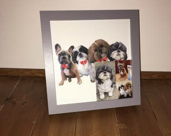 Custom Animal Artwork