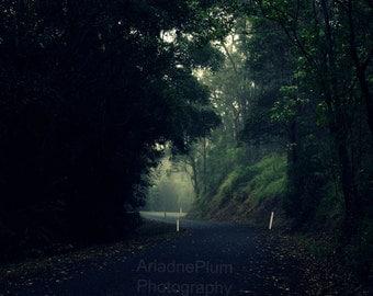 Misty Road | Digital Download